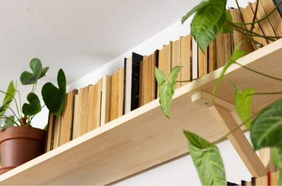 biophilic design in a home shown with houseplants and warm earth tones such as brown that represent nature